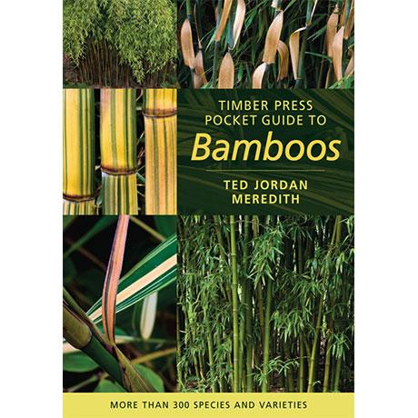 Timber Press Pocket Guide To Bamboos